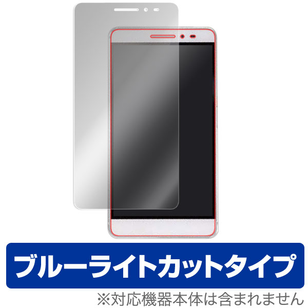 OverLay Eye Protector for EveryPad III