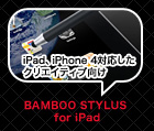 BAMBOO STYLUS for iPad